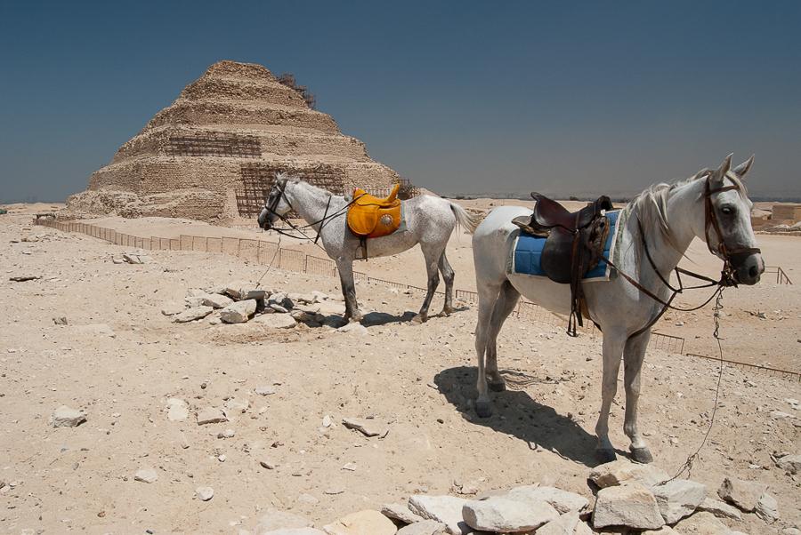 saqqara-2011