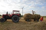wind-farmers