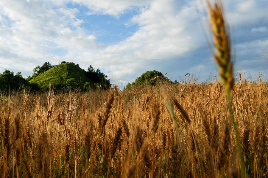 hills-near-nyaradmagyaros-magherani-