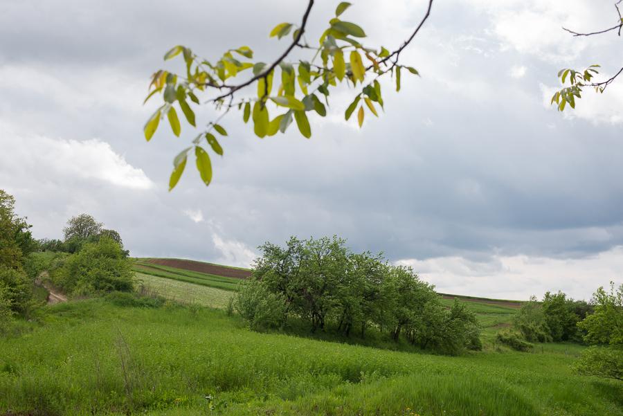 near-szentgerice-galateni-
